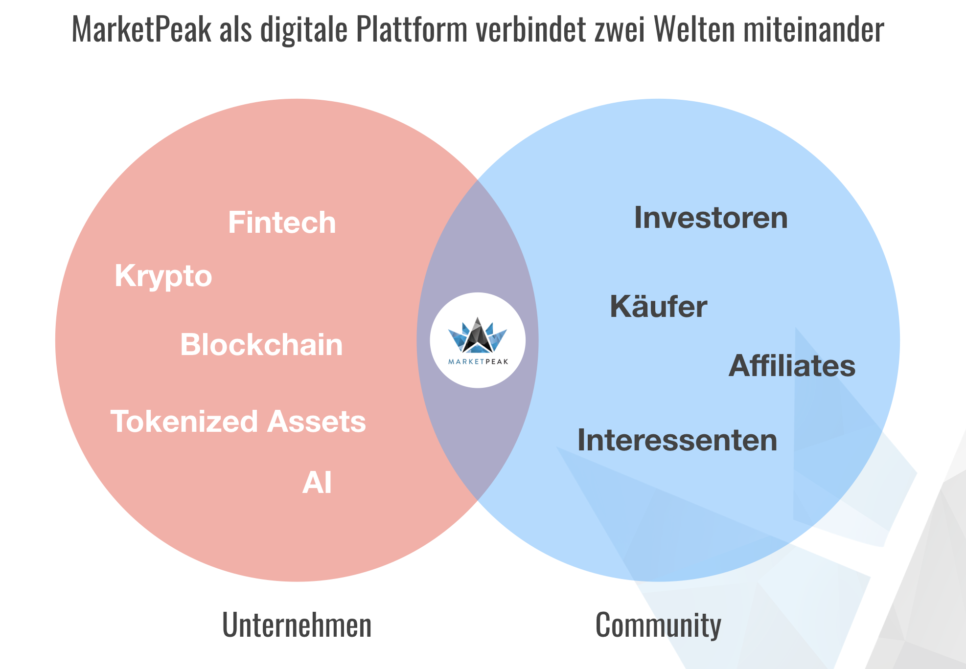 MarketPeak Fintech Lösung